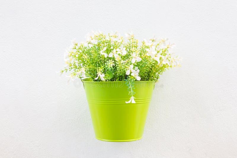 Grön Jardiniere och blomma på väggen arkivfoto
