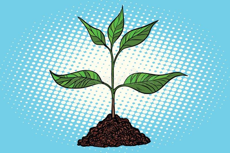 grön jordningsgrodd royaltyfri illustrationer