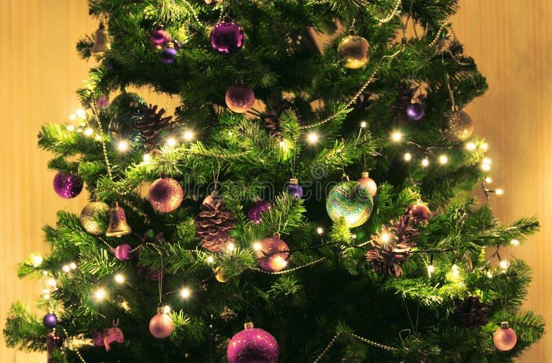 Grön julgran med stora kottar på en beige bakgrund Dekorerat med ljusa runda bollar, girlander och ljusa ljus fotografering för bildbyråer