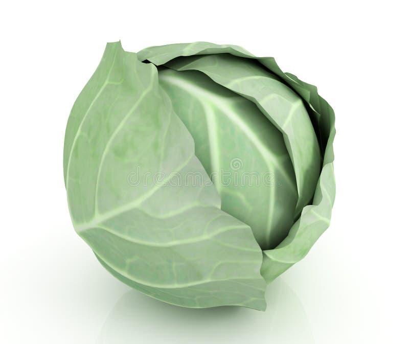 Grön kål stock illustrationer