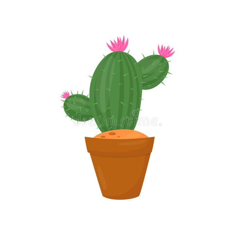 Grön kaktus i brun kruka Växt med små rosa färgblommor och ryggar Inomhus arbeta i trädgården Plan vektorbeståndsdel av hemmet stock illustrationer
