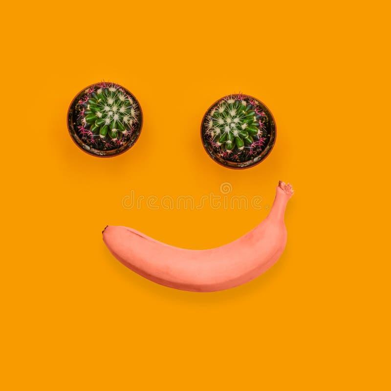 Grön kaktus två och röd banan Le glad framsida Samtida konstcollage Frukter och v?xter royaltyfri foto