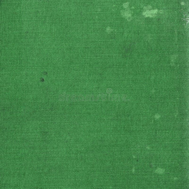 Grön kanfas royaltyfria foton
