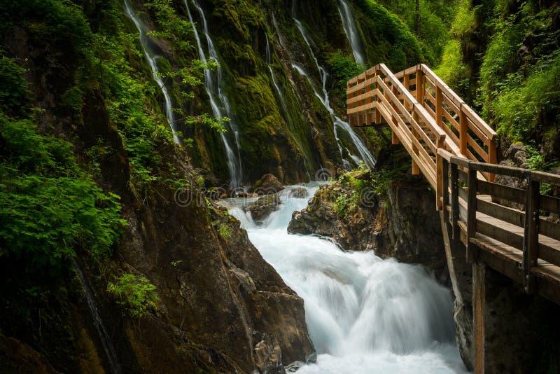 Grön kanjon med den nya trävandringsledet fotografering för bildbyråer