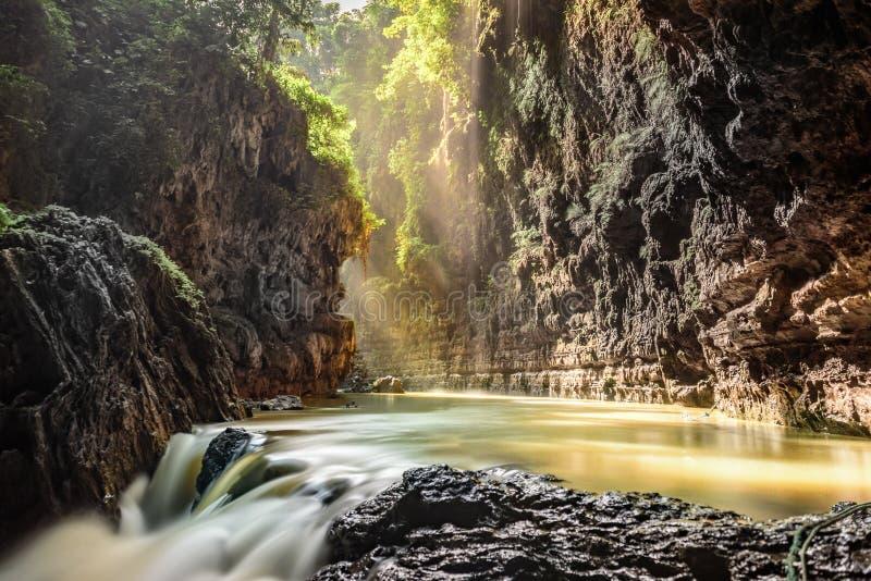 Grön kanjon, Pangandaran, Indonesien royaltyfri foto