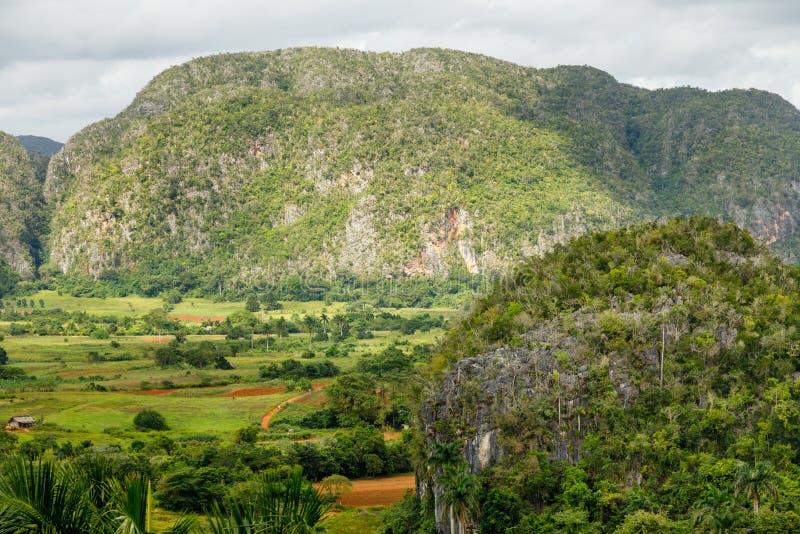Grön karibisk dal med mogoteskullelandskapet, Vinales, Pinar Del Rio, Kuba arkivbild
