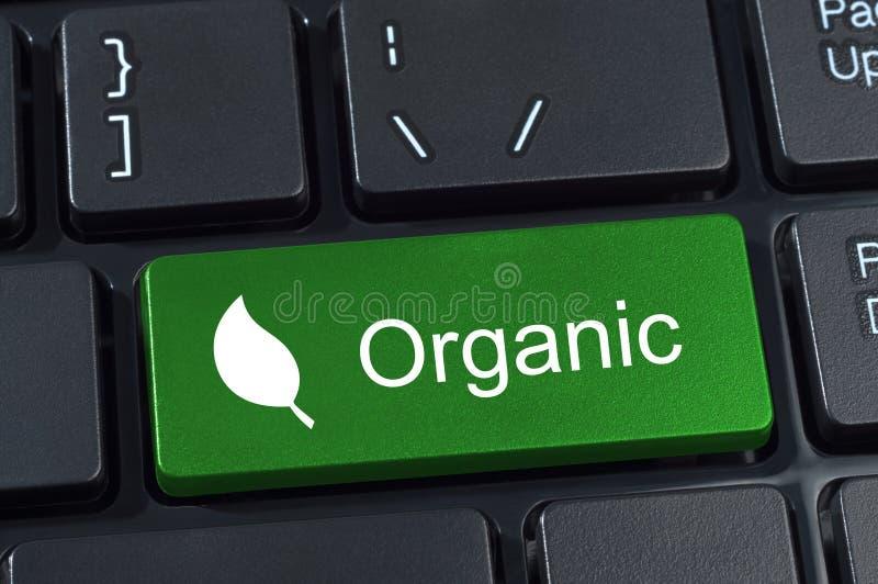 Grön knapp för datortangentbord med det organiska ordet och bladet ic royaltyfria bilder