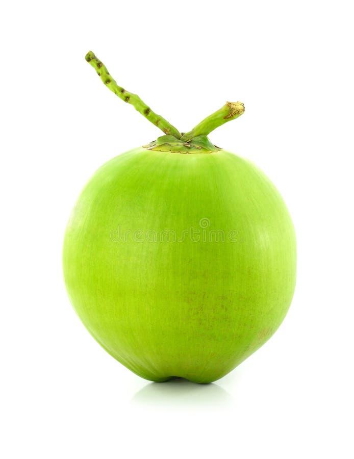 Grön kokosnötfrukt på vit bakgrund royaltyfri bild
