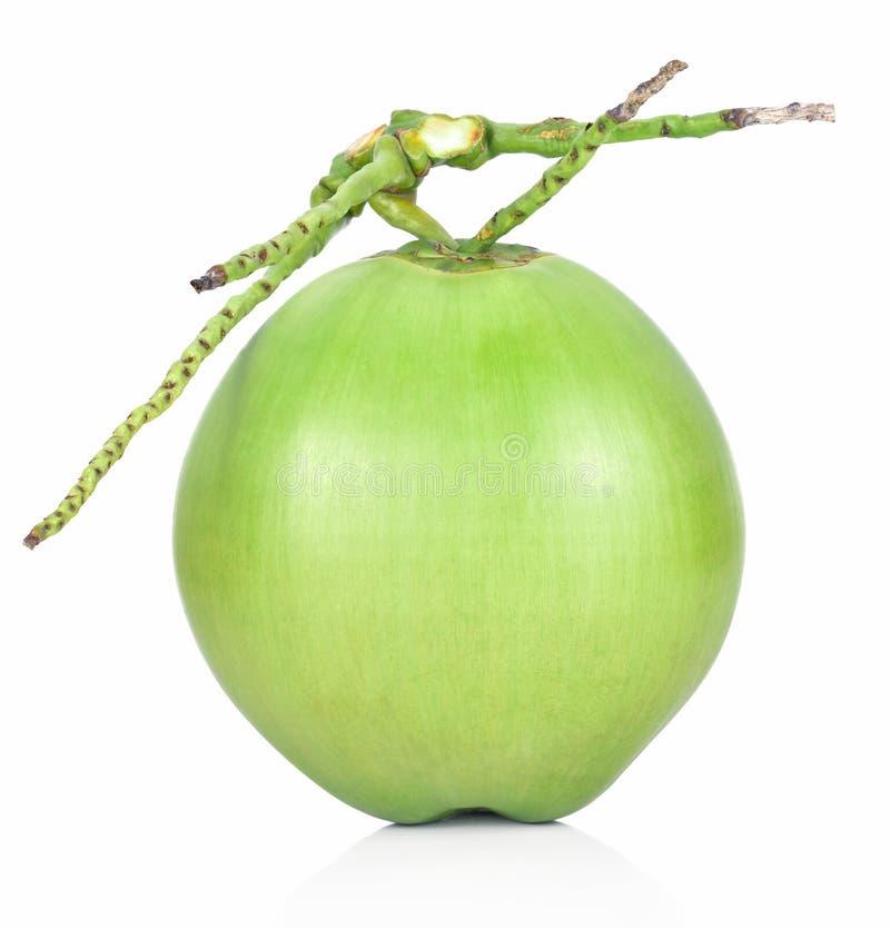 Grön kokosnötfrukt som isoleras på vit bakgrund royaltyfri bild