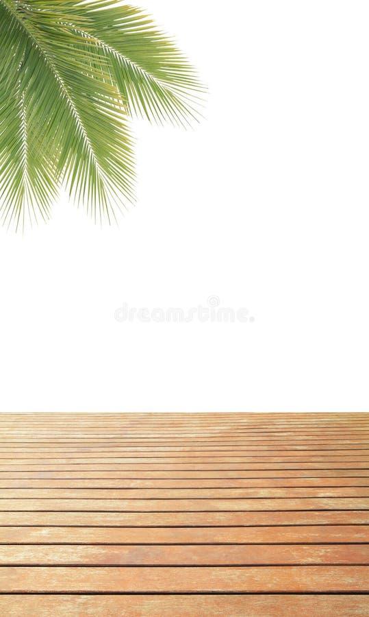 Grön kokosnötsidaram över trägolv royaltyfri fotografi