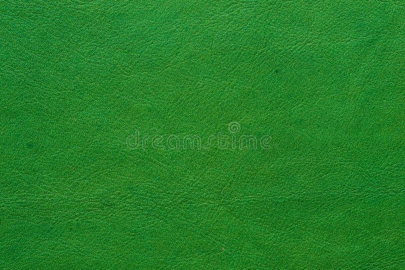 Grön lädercloseup royaltyfri bild
