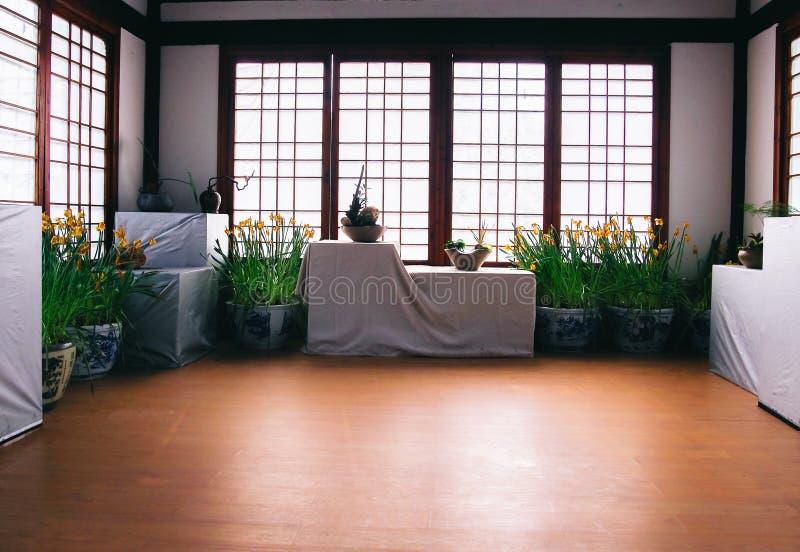 Grön Lövrik Växt På Rum För Svart För Vit För Blom- Kruka För Vitblått Inre Gratis Allmän Egendom Cc0 Bild