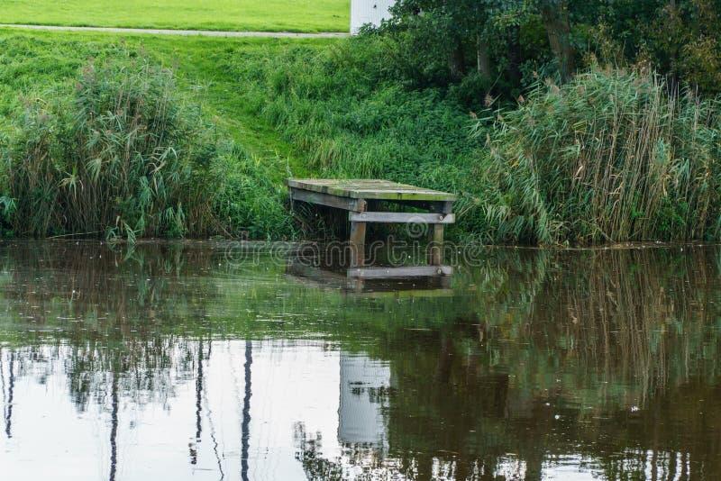 Grön landningetapp i en flod arkivfoton
