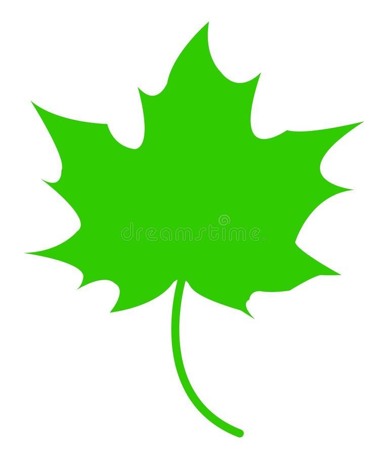 grön leaflönn royaltyfri illustrationer