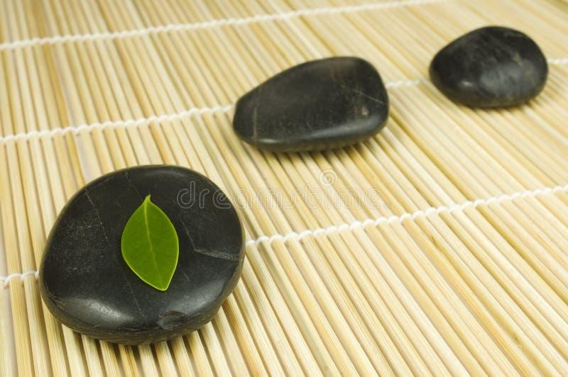 grön leafpebblesrad arkivfoton