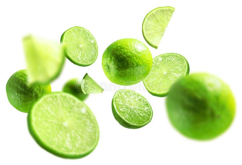 Grön limefrukt fick att sväva på en vit bakgrund fotografering för bildbyråer