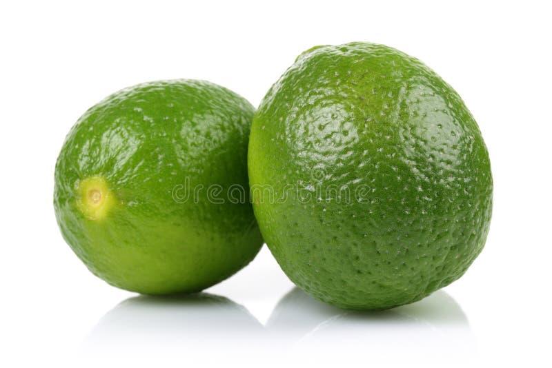 Grön limefrukt två på vit bakgrund arkivbilder