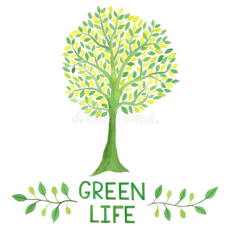 Grön logo för vattenfärg med det gröna trädet grön livstid royaltyfri illustrationer