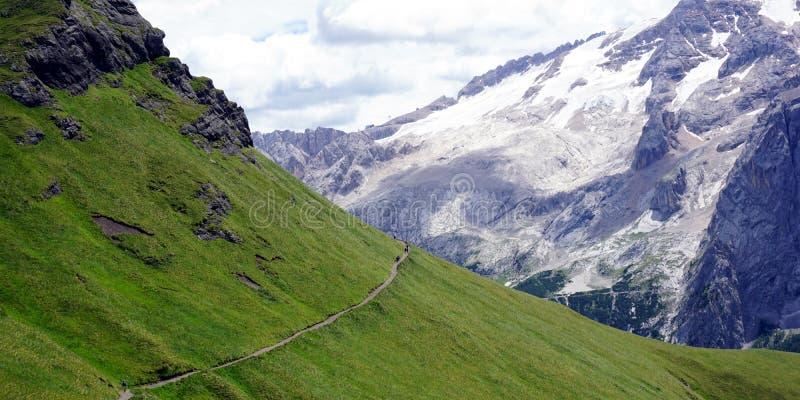 Grön lutning i motsats med snöig maxima i Dolomites arkivfoto