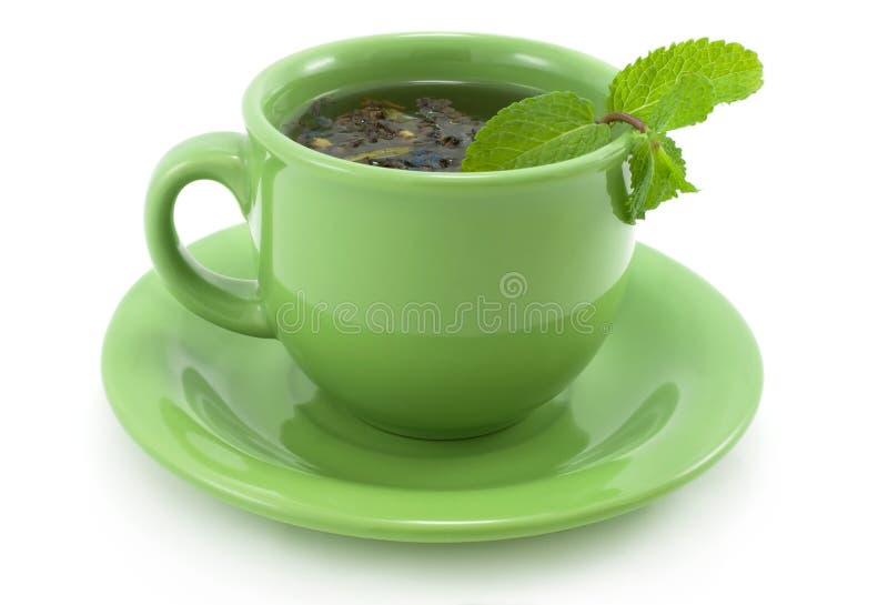 grön minttea för kopp arkivbilder