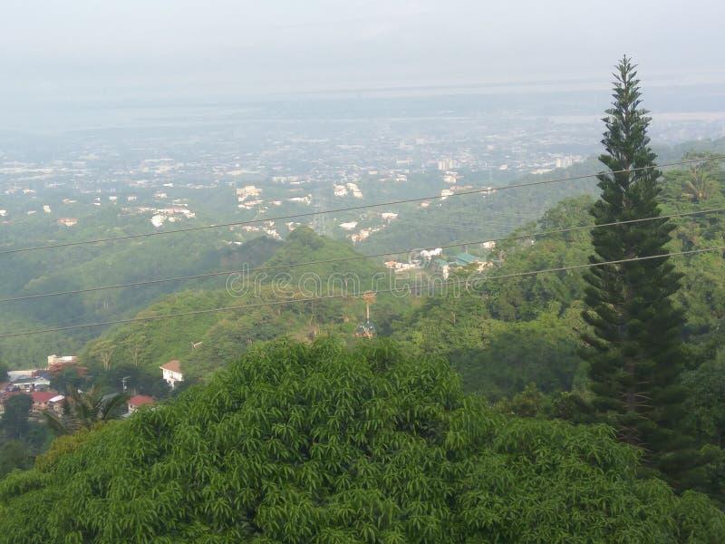 Grön natursikt fotografering för bildbyråer