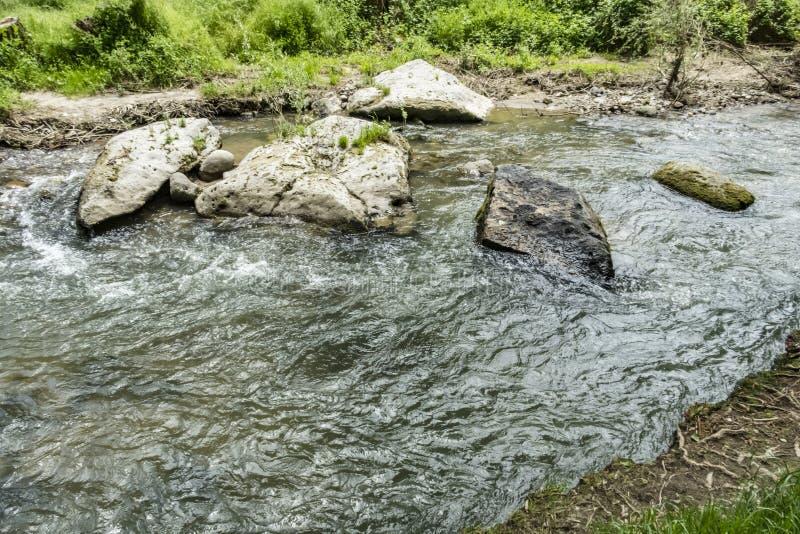 Grön natursikt från den Ihlara dalen fotografering för bildbyråer