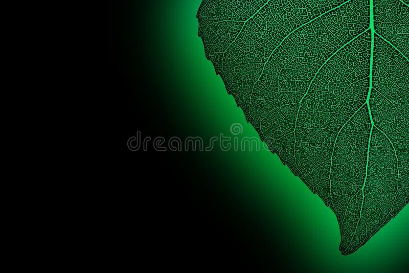 Grön neonleaf vektor illustrationer
