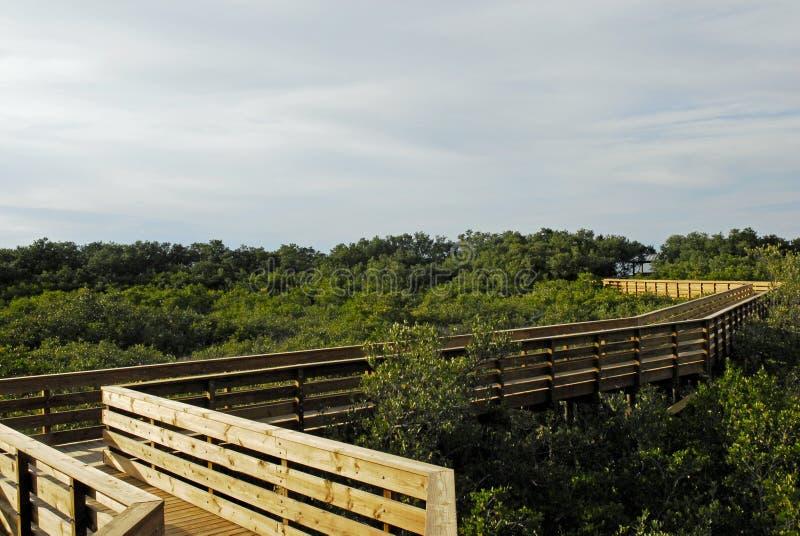 Grön nyckel- strandbana till himmel Fx arkivfoton