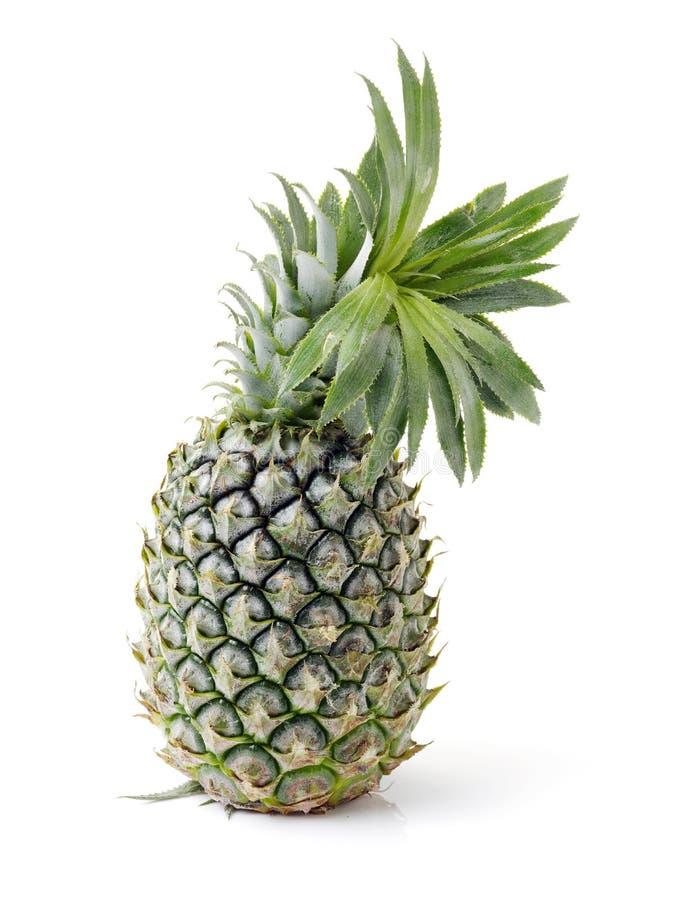 Grön oklippt hel ananas royaltyfri foto