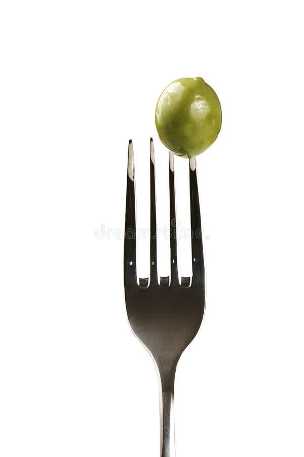 grön olivgrön för gaffel fotografering för bildbyråer