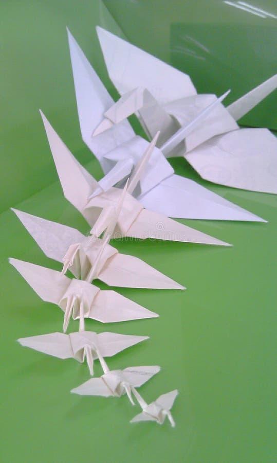 grön origami royaltyfria bilder