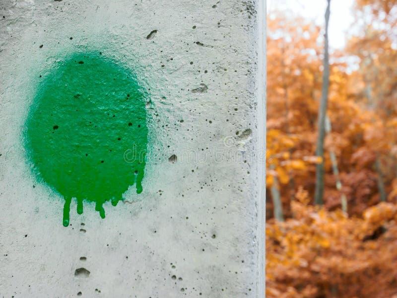 Gr?n paintballfl?ck p? en konkret pol i h?stskogen fotografering för bildbyråer