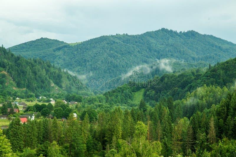 Grön pinjeskog i de Carpathian bergen Byn är borttappad i träna, ljus rökdimma fördelar mellan bergen royaltyfria bilder