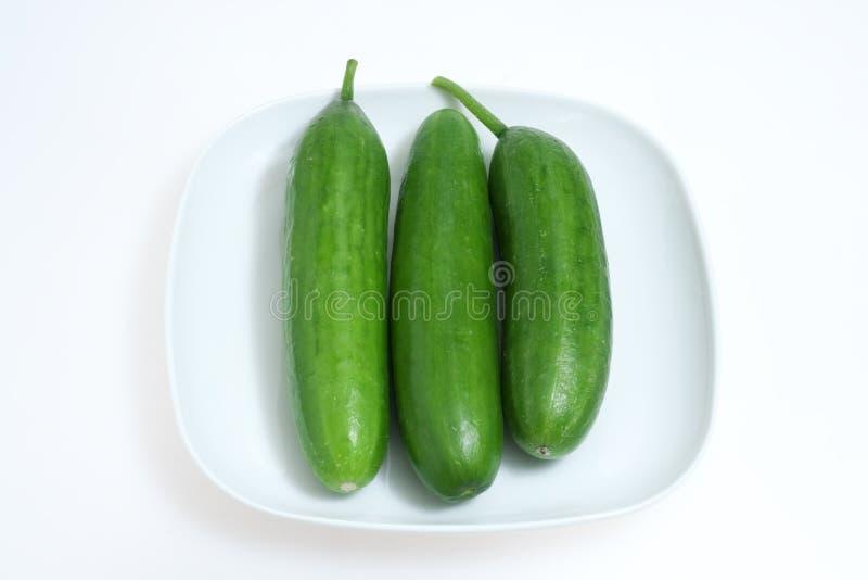 grön plattawhite för gurkor royaltyfri foto