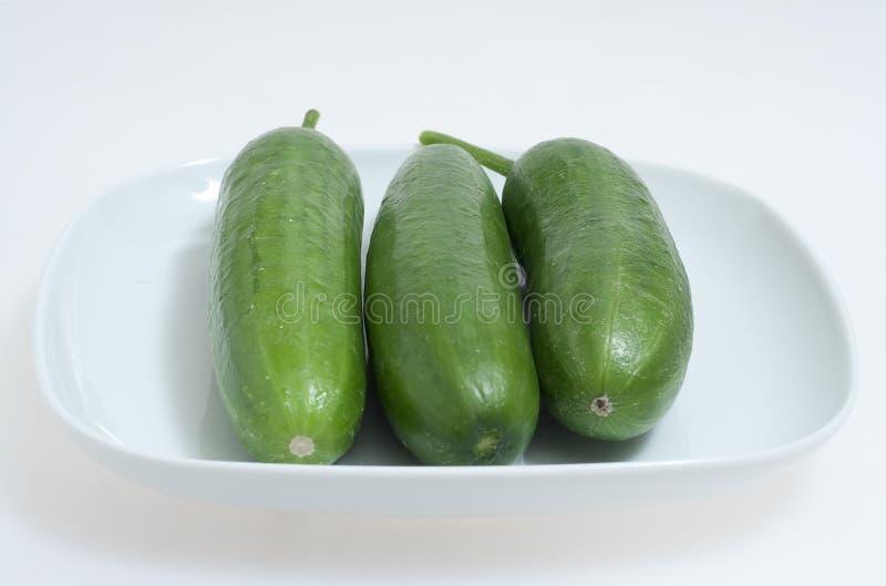 grön plattawhite för gurkor arkivbilder