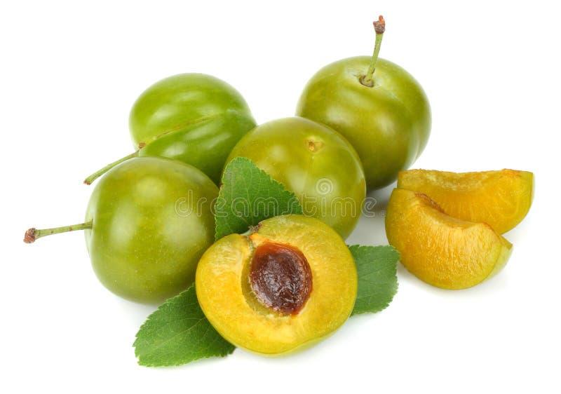 Grön plommonfrukt som isoleras på vit bakgrund royaltyfria bilder