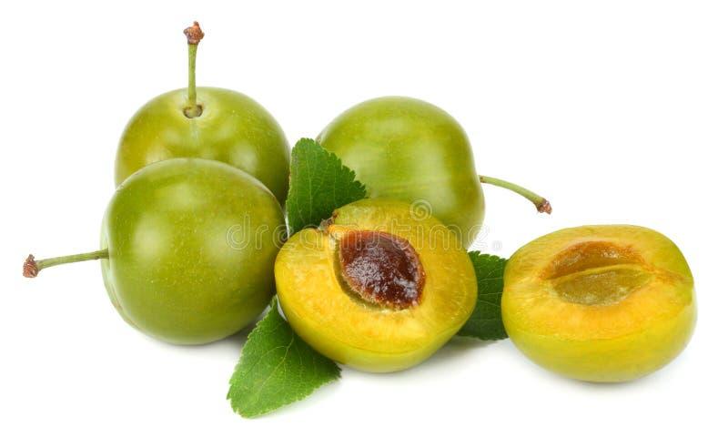 Grön plommonfrukt som isoleras på vit bakgrund arkivbild