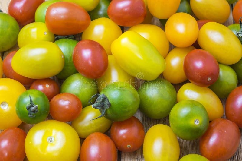 grön röd tomatyellow royaltyfria bilder