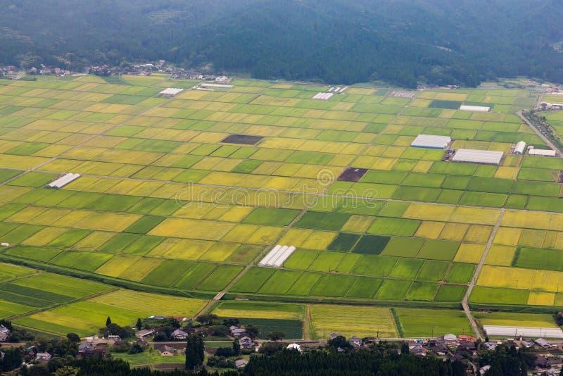 Grön risfält i den Aso byn i Kumamoto, Japan royaltyfria foton