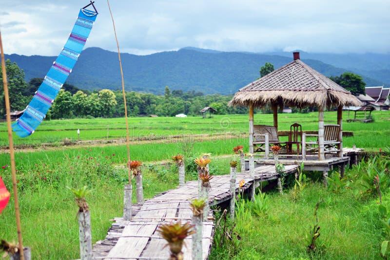 Grön rislantgård och kojan på Nan royaltyfria bilder