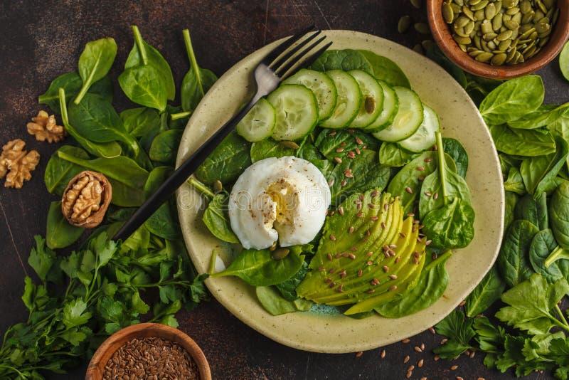 Grön sallad med spenat, gurkan, avokadot, ägget, lin och pumpk fotografering för bildbyråer