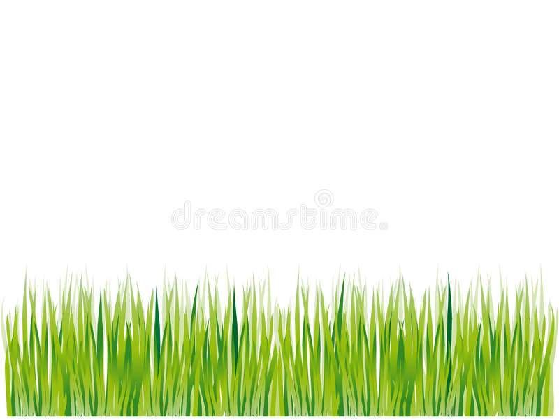 grön silhouettesommar för gräs vektor illustrationer