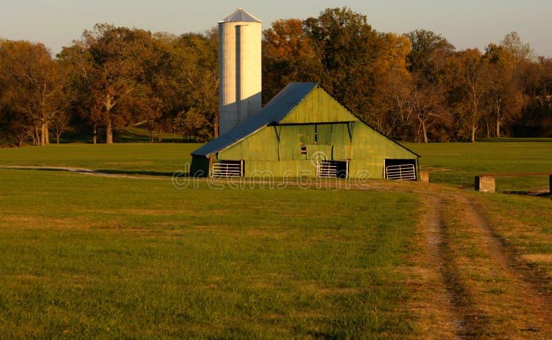 grön silo för ladugård arkivfoton