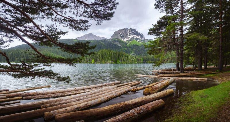 Grön sjö i Montenegro royaltyfri foto