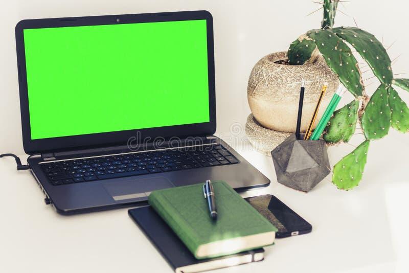 Grön skärmbärbar dator, kaktusväxt i lerakruka, bok, anteckningsbok, smartphone och blyertspennor på den vita tabellen, utbildnin royaltyfri bild