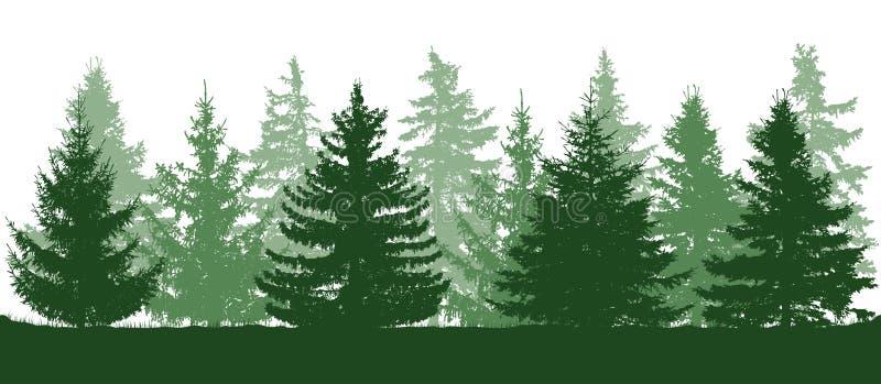 Grön skog för sommar, kontur av granar också vektor för coreldrawillustration royaltyfri illustrationer