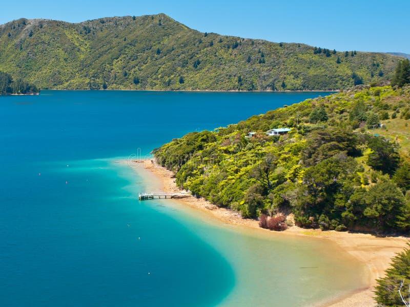 Grön skog och blått vatten arkivfoton