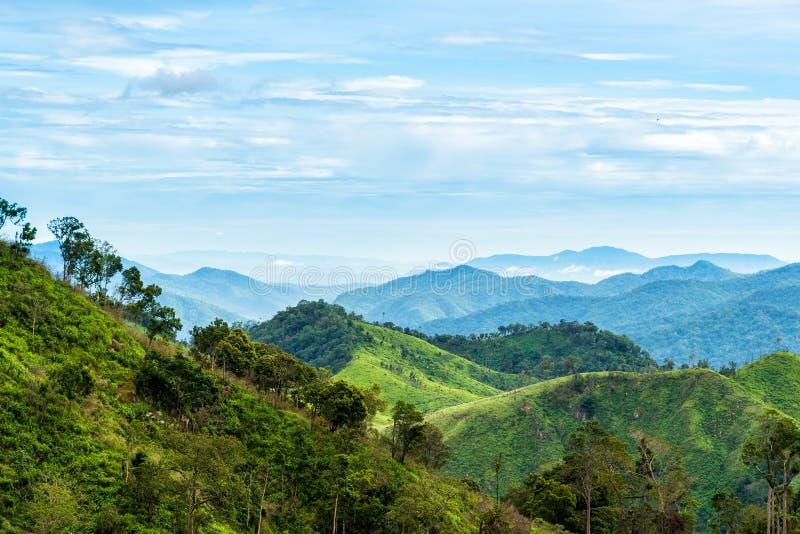 Grön skog på bergskedjalandskap med blå och molnig himmel arkivfoto