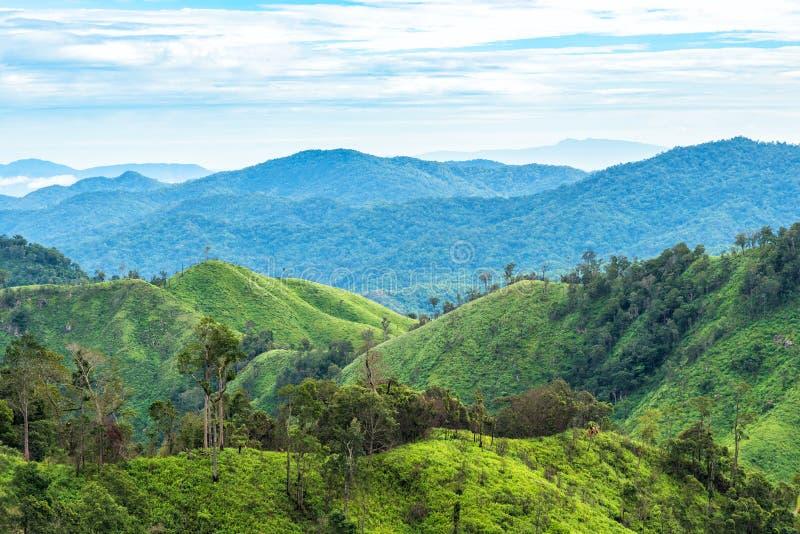 Grön skog på bergskedjalandskap med blå och molnig himmel arkivfoton