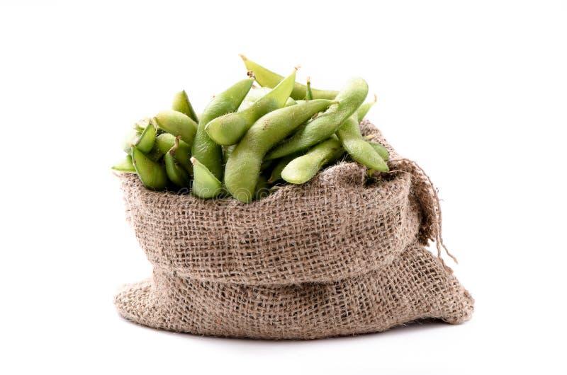 Grön sojaböna, duvaärtan eller släkte Cajanus arkivbild
